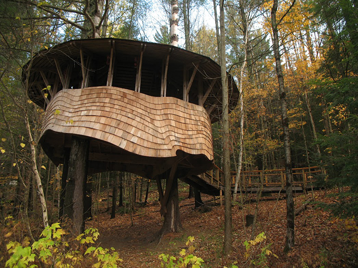 Innovative treehouse design is wheelchair accessible